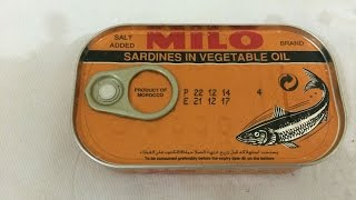 CANNED SARDINES  FROM MOROCCO TASTE TEST