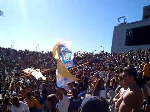 Los Guerreros en Mar del Plata 26/11/2012