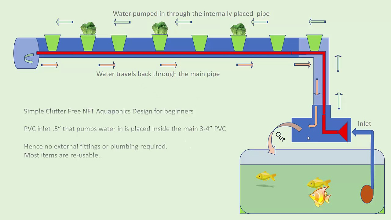 Simple Clutter Free NFT Aquaponics Design for beginners
