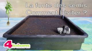 Lutter contre la fonte des semis - Le conseil des 4 Saisons du jardin bio