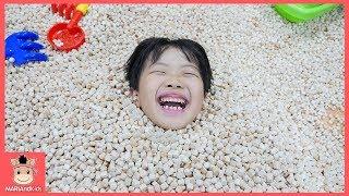 미니가 나무 속에서 행복해요! 타요 키즈카페 편백 나무 놀이 ♡ 어린이 놀이터 놀이동산 indoor playground for kids | 말이야와아이들 MariAndKids