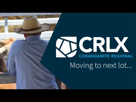 CRLX - 31 July 2018 - Prime Cattle Sale