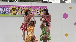北限に観る蓮の花まつり 2ndステージ (平川市猿賀公園 13:30)