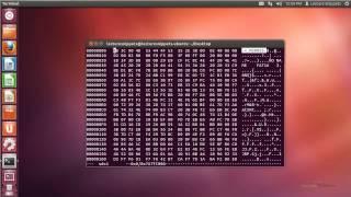 Ubuntu 12.04 Forensics - Securely Erasing a Disk and File using Shred