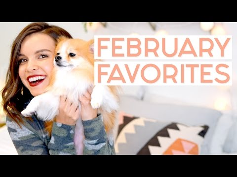 Save February Favorites 2017! (Also, I got a dog!!) | Ingrid Nilsen Snapshots