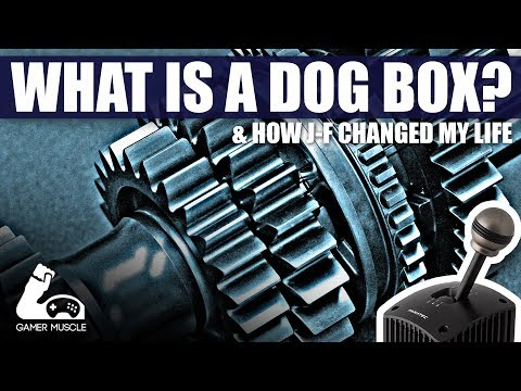 WHAT IS A DOG BOX ? - 90'S DTM GEAR SIMULATION IN R3E - [EXPOSED]