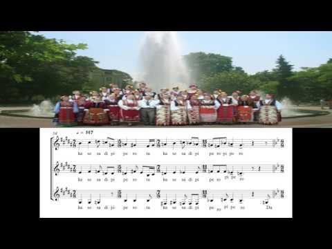 Bulgarian State Television Female Vocal Choir Transcription Dilmano Dilbero