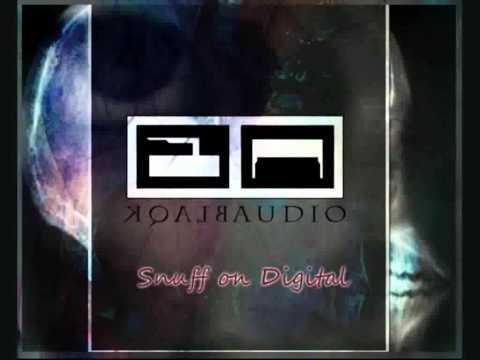 Blaqk Audio - Snuff On Digital (with lyrics) mp3