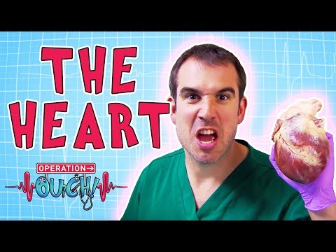 Operation Ouch - The Heart | Amazing Body Facts for Kids