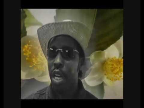 Se7en Camellia Sinensis Video