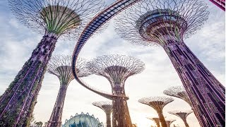Gardens by the Bay Singapore Tour - Cloud Forest & Flower Do...