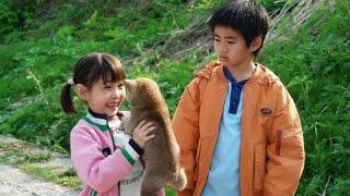 Repeat youtube video 恋愛映画 ✣ マリと子犬の物語 02 ✣ コメディ映画