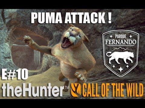 theHunter: Call of the Wild - PUMA ATTACK ! - Parque Fernando - EP#10