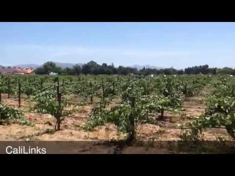 V Sattui Winery - Wine Tasting & Picnic Destination - Napa Valley California Wine Country