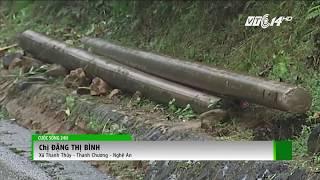 VTC14 | Làng gần nửa thế kỷ không có điện tại Nghệ An