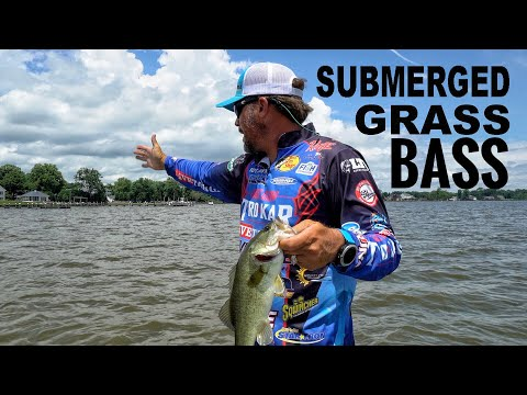 Fishing Submerged Vegetation - Pro Fishing Tips