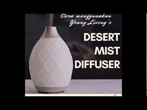 Cara Menggunakan Young Living's Desert Mist Diffuser