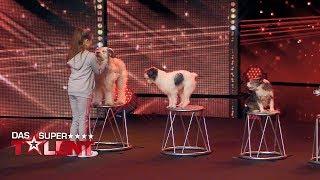 Alexa dressiert ihre acht Hunde wie ein Profi | Das Supertalent 2017 | Sendung vom 30.09.2017