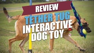 Tether Tug Interactive Dog Toy Review