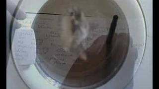 Dear Mum - A film by Mick Rendell