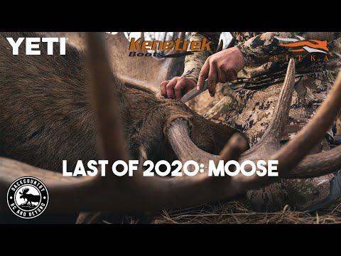 Last Hunt of 2020 Part Two: MOOSE