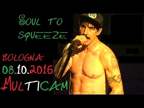 Red Hot Chili Peppers - Soul To Squeeze (Live in Bologna MULTICAM)