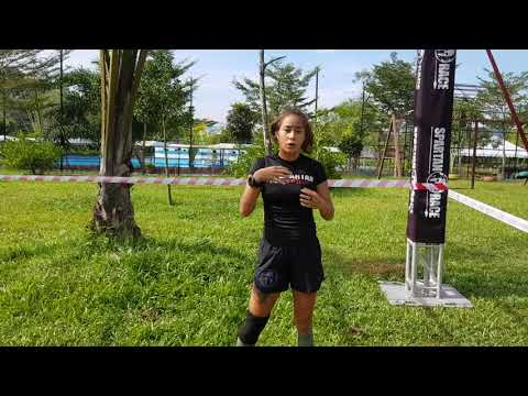 Obstacle Tips  - Multi Rig