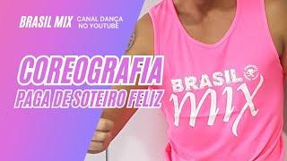 Baixar Paga de Solteiro Feliz -  Simone e Simaria feat. Alok   Coreografia Brasil Mix