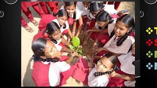 Kalapatti Government Higher Secondary School, Coimbatore, Tamilnadu 641 048. (GHSS kalapatti)