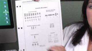 Human Physiology : How Many Chromosomes Does Each Human Cell Have?