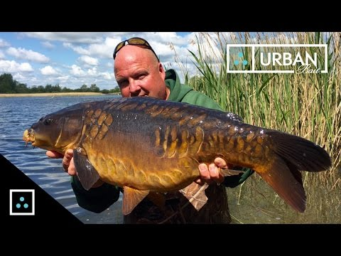 CARP FISHING - IN SESSION WITH JIM SHELLEY