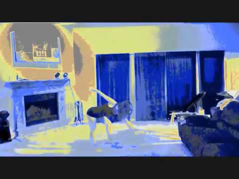 Incubus - Warning (Music video appreciation)