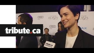 EXCLUSIVE: Katherine Waterston - Fantastic Beasts and Where To Find Them, Red Carpet Interview