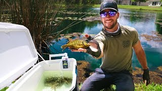 Transporting Bass CANDY with Homemade Livewell!! (Pond Rescue)