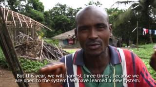 Oxfam Liberia Rice Farms project