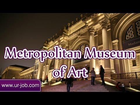 Metropolitan Museum of Art   American Museum of Natural History