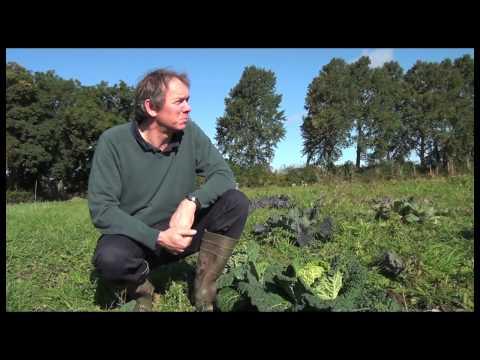 Eva's Organics - Cumbria