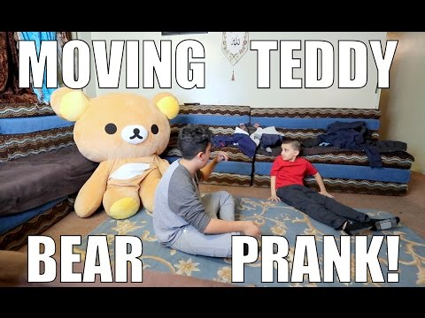 MOVING TEDDY BEAR PRANK!!! (INSANE)