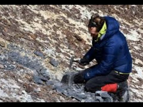 "Special Report: ""Ancient Fossil Found In Antarctica"" (Steve Quayle Interview)"