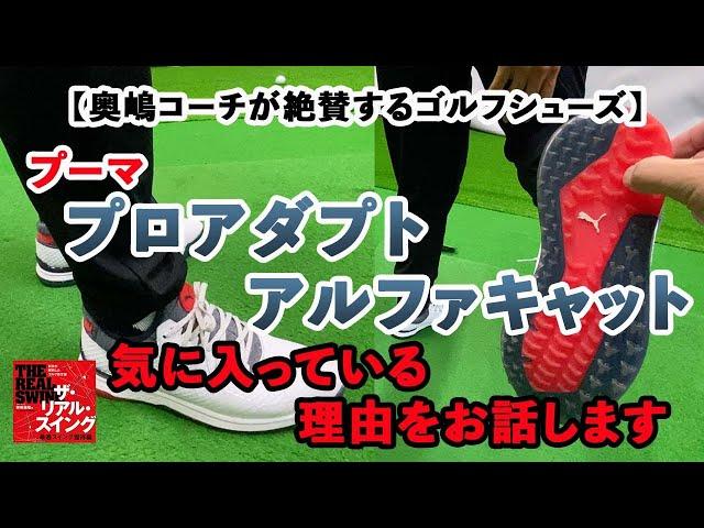 【奥嶋コーチが絶賛するゴルフシューズ】〜 気に入っている理由をお話します 〜  『プーマ プロアダプト アルファキャット』