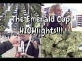 EMERALD CUP 2015 | HIGHlights | CoralReefer
