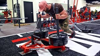 4 EXERCISES YOU HAVE TO TRY WHEN YOU ARE AT ZOO CULTURE GYM!