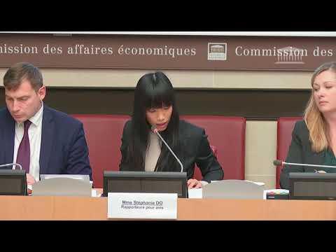 Stéphanie DO - PLF2020 - 2ème session - cohésion des territoires - commission