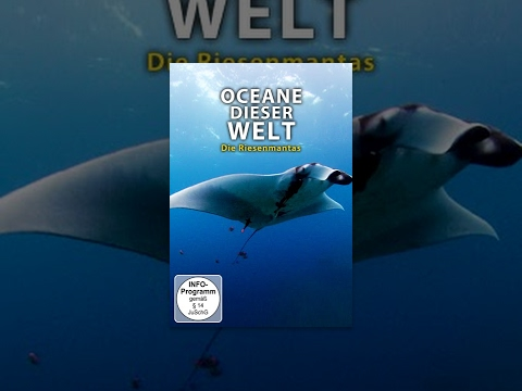 Ozeane dieser Welt - Die Riesenmantas