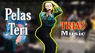 Download FEBY PESEK | PELAS TERI | TRIAS MUSIC | MBALONG