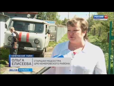 Кузбасских дачников учили оказывать первую медицинскую помощь