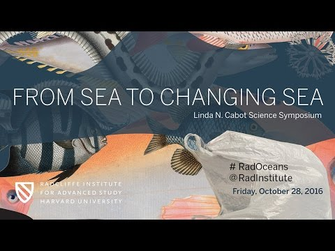 From Sea to Changing Sea | The Role of Oceans in Climate || Radcliffe Institute