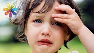 Моего ребенка в садике бьют! – Все буде добре. Выпуск 711 от 25.11.15