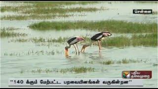 Pallikaranai Wet land : High court