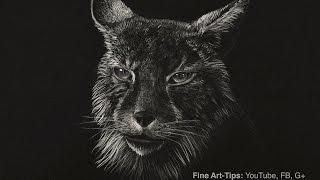 Cómo dibujar un lince - gato salvaje